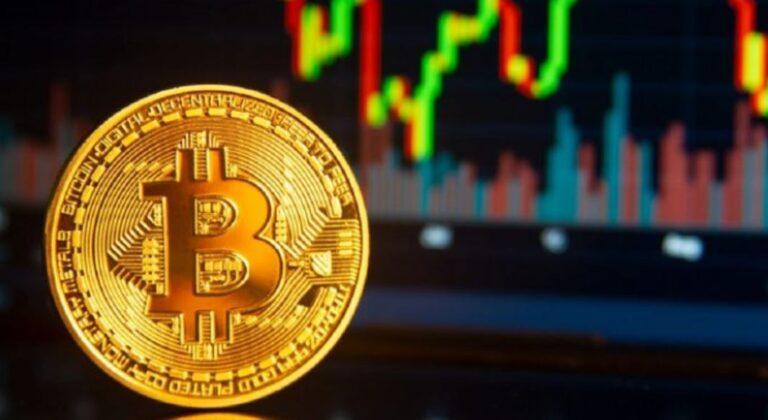 Bitcoin: Volume de compra dispara e 81% das carteiras estão com lucro no dia do Halving
